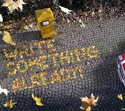 Falling leaves settle into these words on the ground: ''WRITE SOMETHING ALREADY''